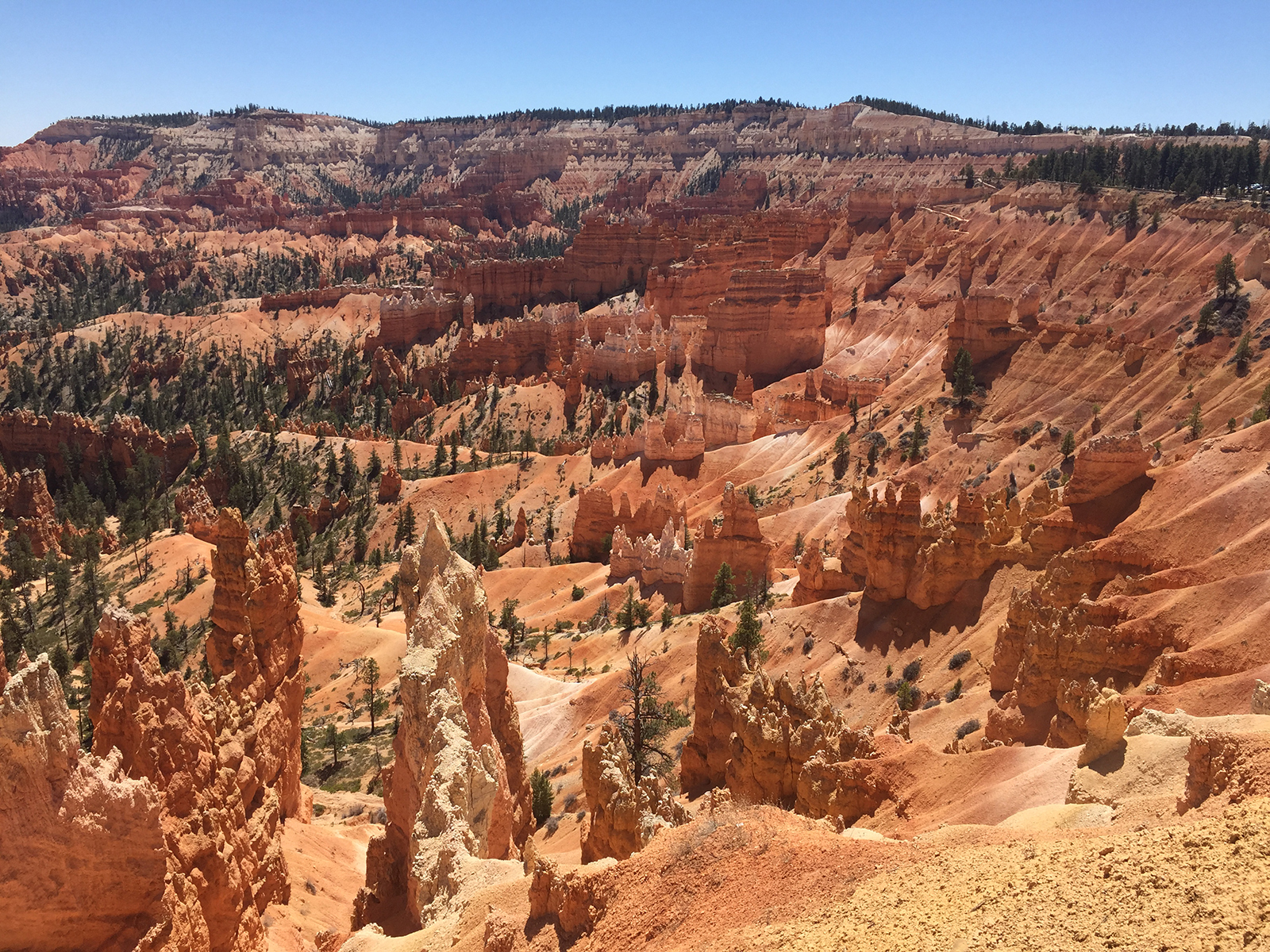 A Day in Bryce Canyon National Park